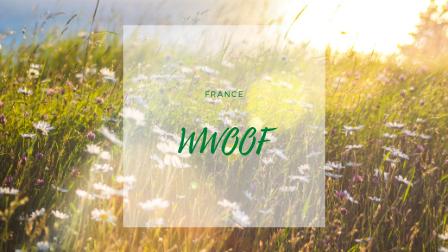 フランスでWWOOF。無料でファームステイしてみよう