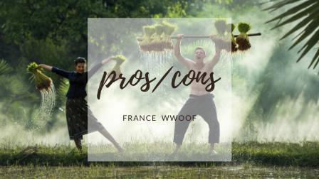 WWOOFでホームステイ!農家暮らしで見えたフランス。