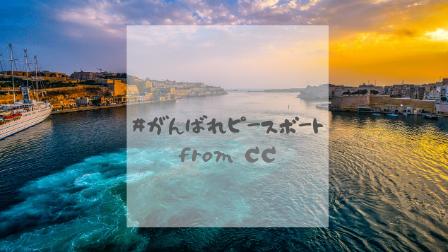 ピースボート通訳経験の記事への画像です。